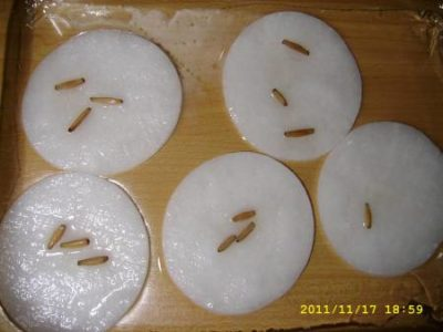 нужно ли замачивать семена тыквы