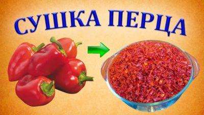 как сушить болгарский перец