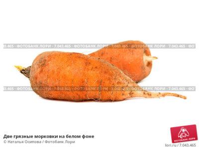 как правильно обрезать морковь на хранение