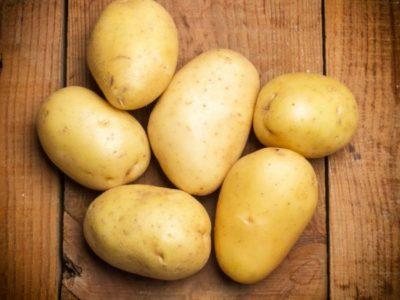 картофель лабадия описание сорта