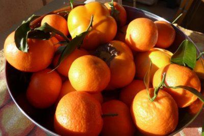 как сушить мандарины