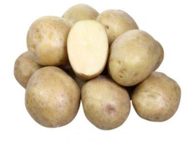 сорт картофеля лимонка