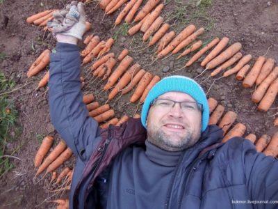 как на зиму сохранить морковь