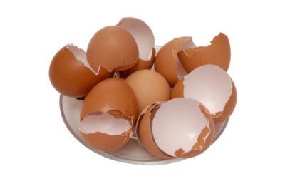 яичная скорлупа как удобрение для рассады