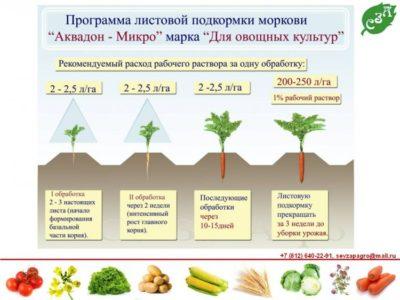 какие удобрения вносить весной