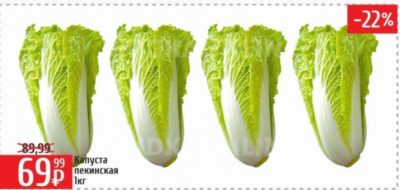 как пикировать пекинскую капусту