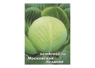 сорт капусты московская поздняя