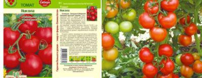 помидоры лучшие сорта для открытого грунта низкорослые для подмосковья