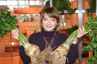 корневой сельдерей выращивание из семян