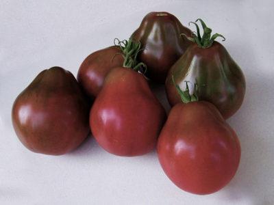 японские сорта томатов