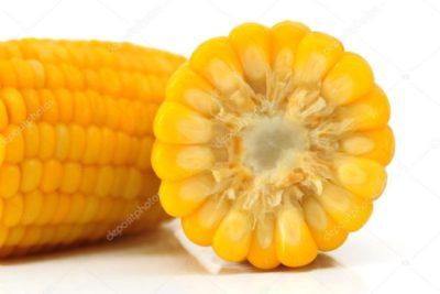 сколько хранится кукуруза в початках