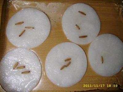 проращивание семян тыквы