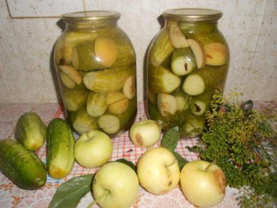 засолка огурцов на зиму с яблочным уксусом
