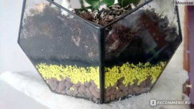 зола от угля как удобрение