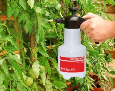 нашатырный спирт от тли на помидорах