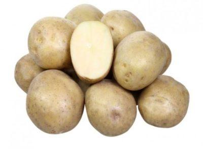 сорт картофеля чародейка