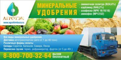 азофоска удобрение применение на огороде