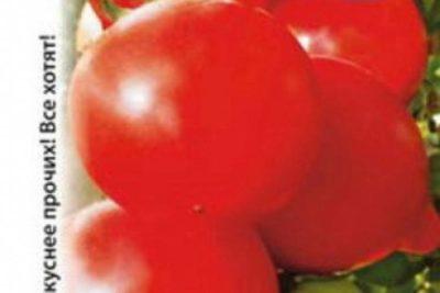 сорт томата персик