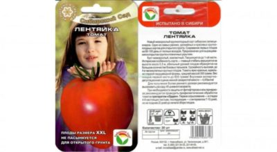 сорт томата лентяйка
