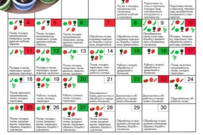 лунный календарь посадки чеснока на зиму