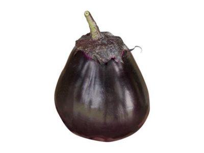 баклажан сорт черный красавец