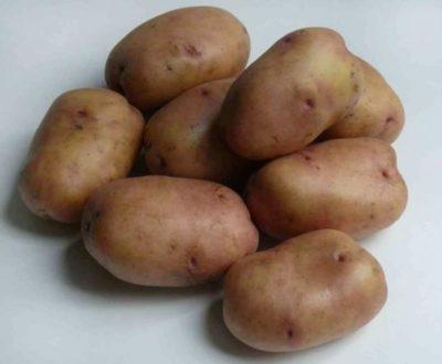 сорт картофеля банан описание