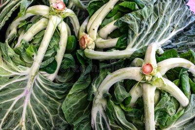 вредители цветной капусты
